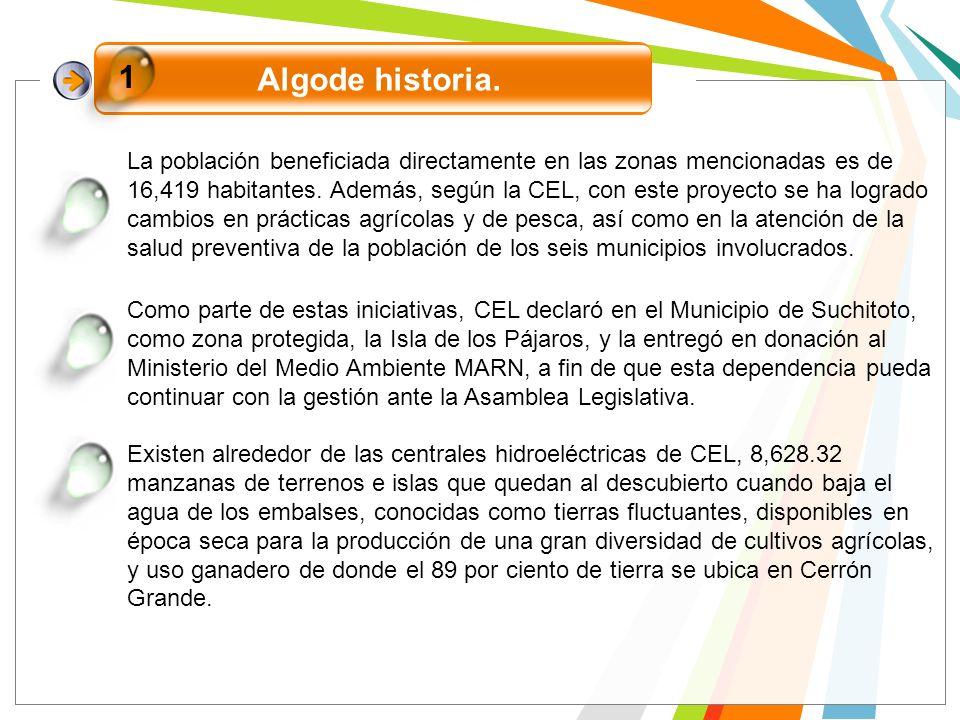Como parte de estas iniciativas, CEL declaró en el Municipio de Suchitoto, como zona protegida, la Isla de los Pájaros, y la entregó en donación al Mi