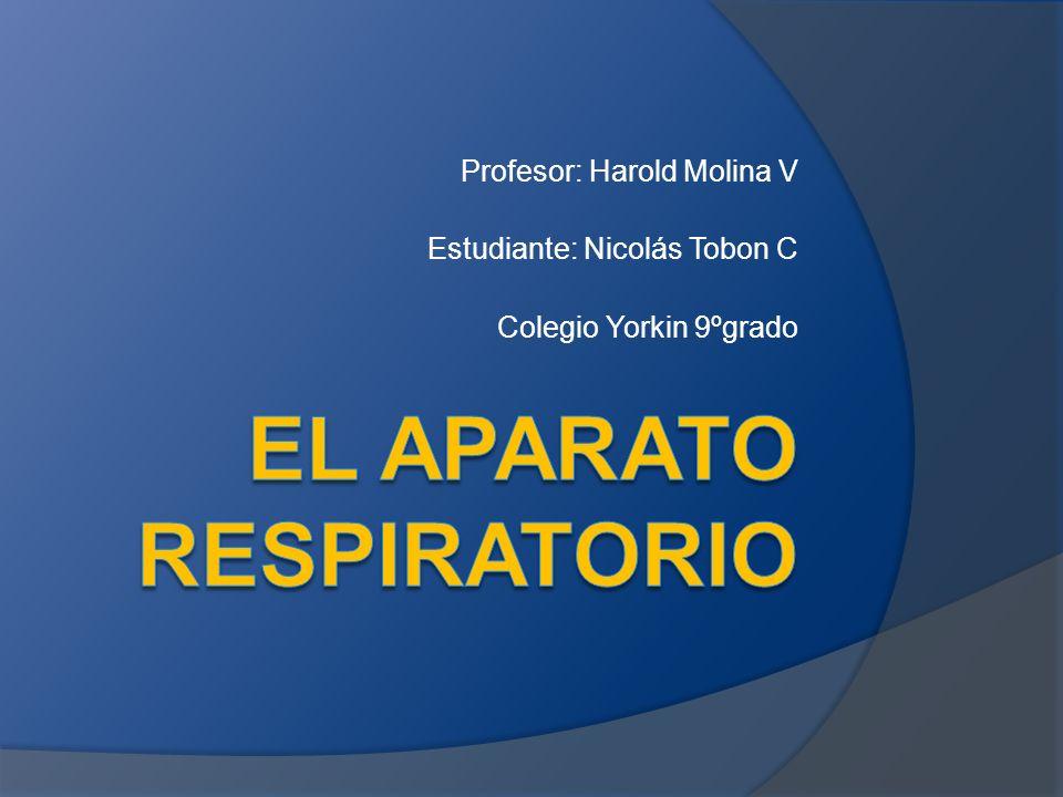 Profesor: Harold Molina V Estudiante: Nicolás Tobon C Colegio Yorkin 9ºgrado
