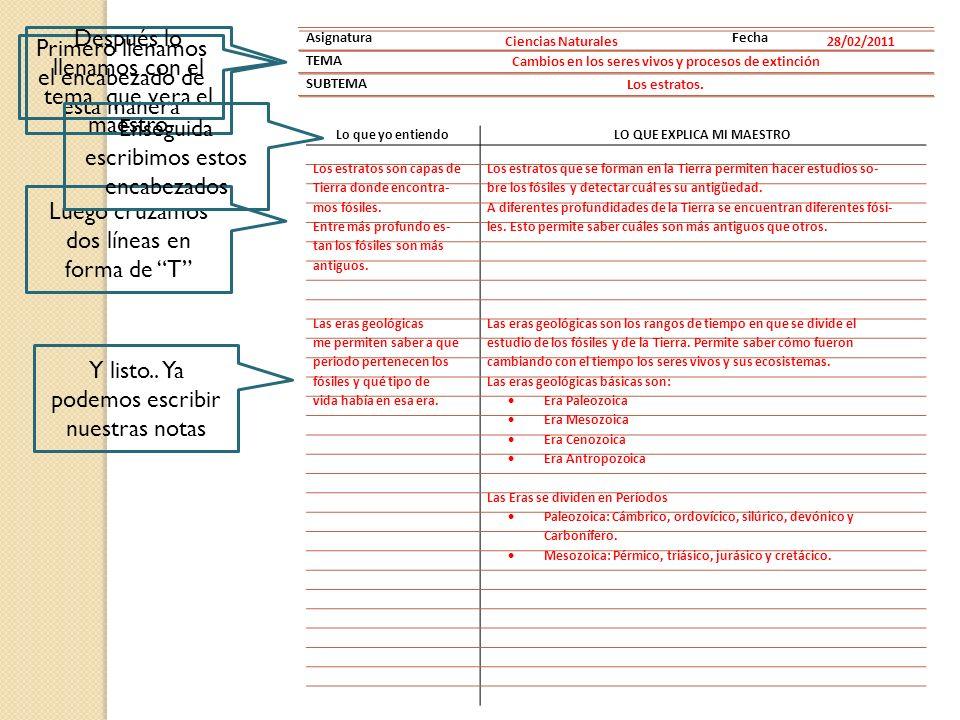 AsignaturaFecha TEMA SUBTEMA Ciencias Naturales28/02/2011 Cambios en los seres vivos y procesos de extinción Los estratos.