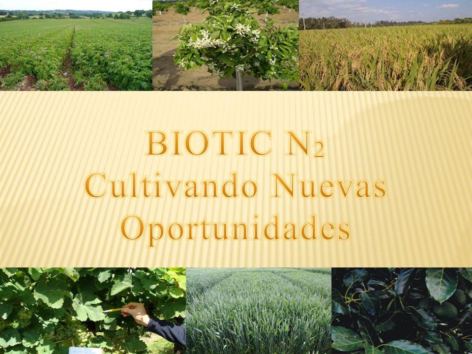 INTRODUCCION Información introductoria de Biotic N 2 Este producto es apropiado para: Cultivos con Biotic N 2 Mechanismos Métodos y aplicaciones: Procedimientos de Biotic N 2 Microorganismos del Biotic N 2 : Comportamiento después de la aplicación.
