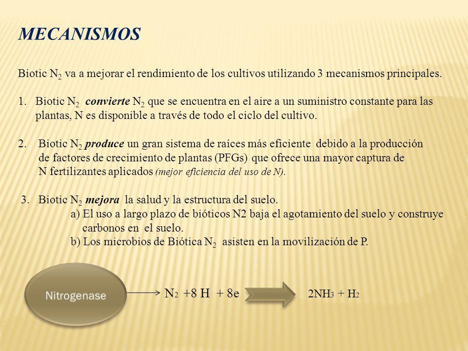 2NH 3 + H 2 CaHPO4 +H (+) H2PO4 + Ca (2+) Ca5 (PO4) 3(OH) +4H (+) 3HPO4 + 5Ca (2+) + H2 O Composición de elementos en la Bacteria Fosforo3.0 %Sulfuro1.0% Potasio1.0%Magnesio0.5% Calcio0.5%Hierro0.2%