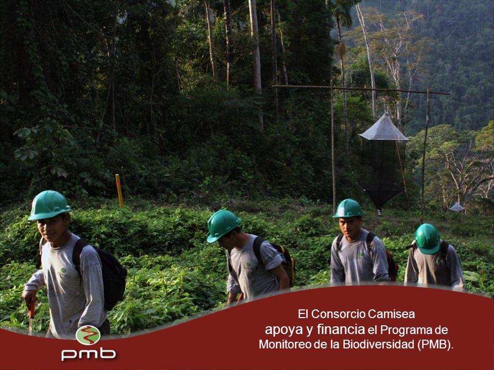 El Consorcio Camisea apoya y financia el Programa de Monitoreo de la Biodiversidad (PMB).