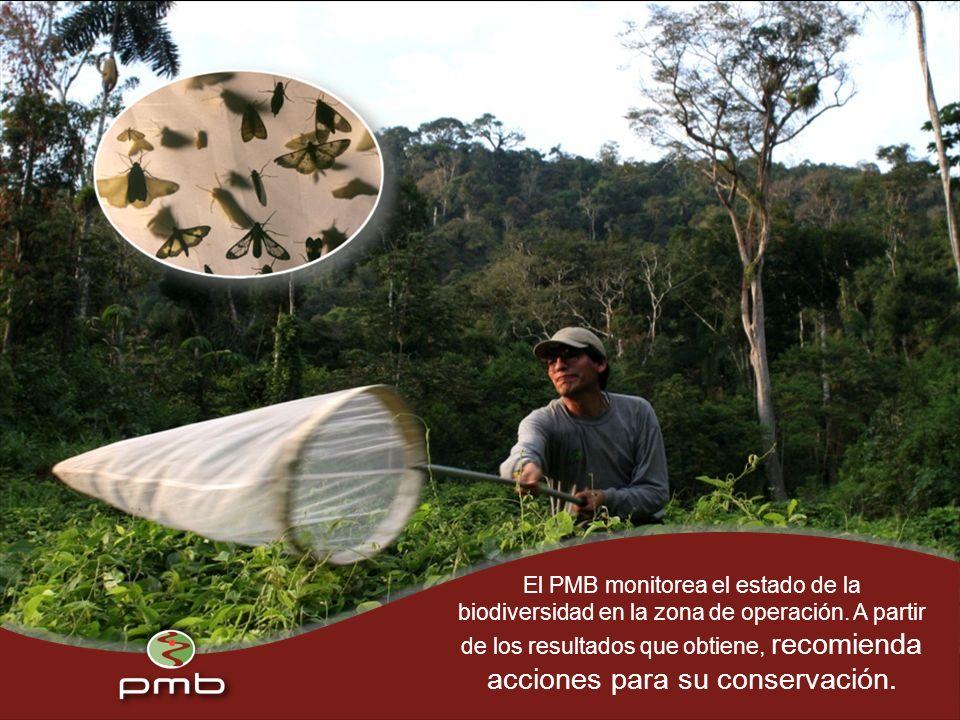 El PMB monitorea el estado de la biodiversidad en la zona de operación.