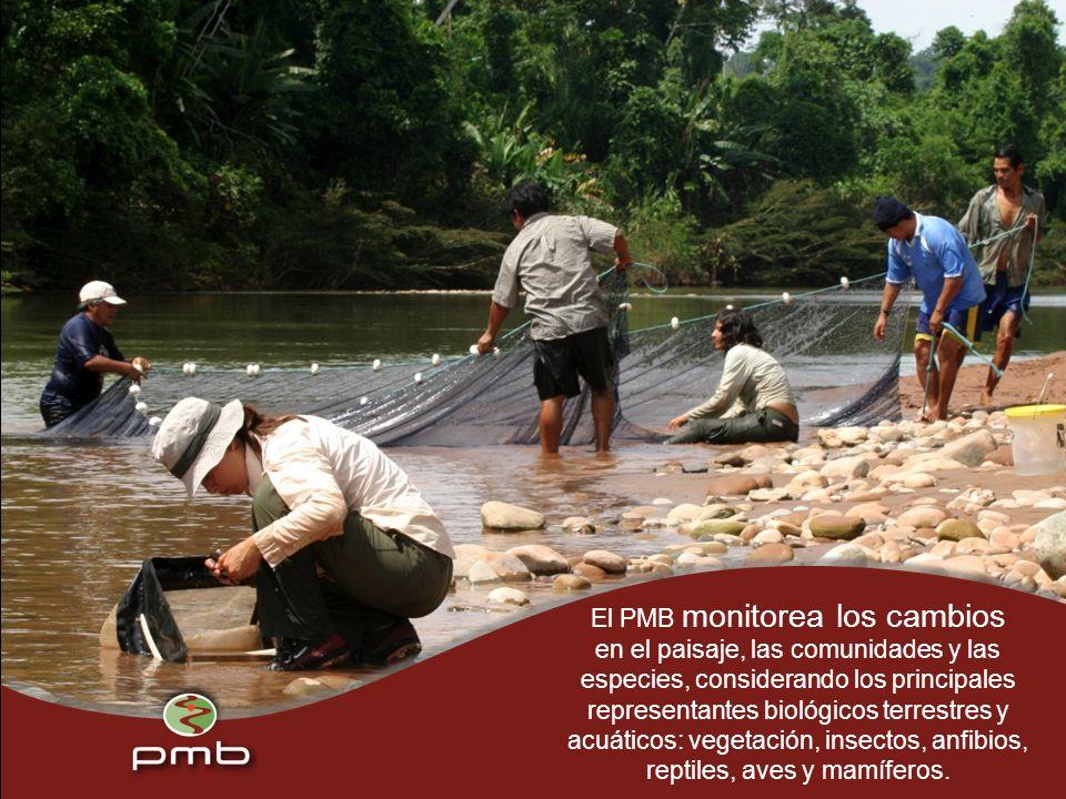El PMB monitorea los cambios en el paisaje, las comunidades y las especies, considerando los principales representantes biológicos terrestres y acuáticos: vegetación, insectos, anfibios, reptiles, aves y mamíferos.