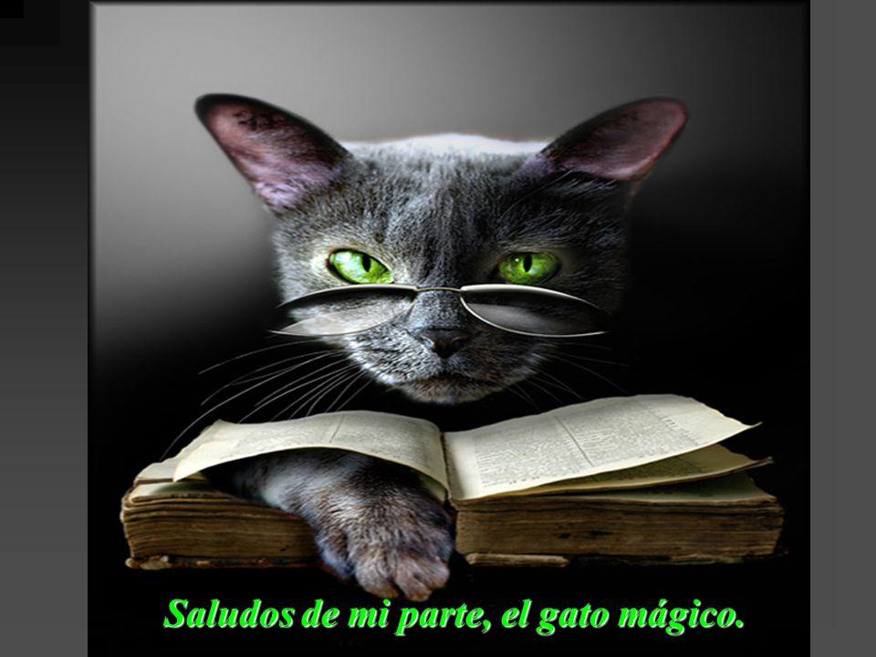 Saludos de mi parte, el gato mágico.