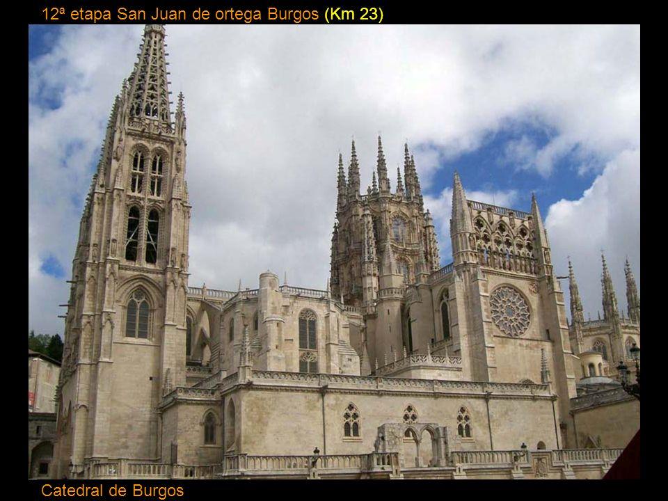 11ª etapa Belorado San Juan de Ortega (Km 24) Abside Monasterio San Juan de Ortega.