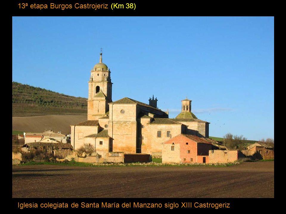 12ª etapa San Juan de ortega Burgos (Km 23) Catedral de Burgos