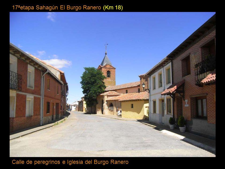 16ª etapa Carrión de los Condes Sahagún (Km 37) Iglesia de San Tirso, romanico mudejar Sahagún, Castilla-León