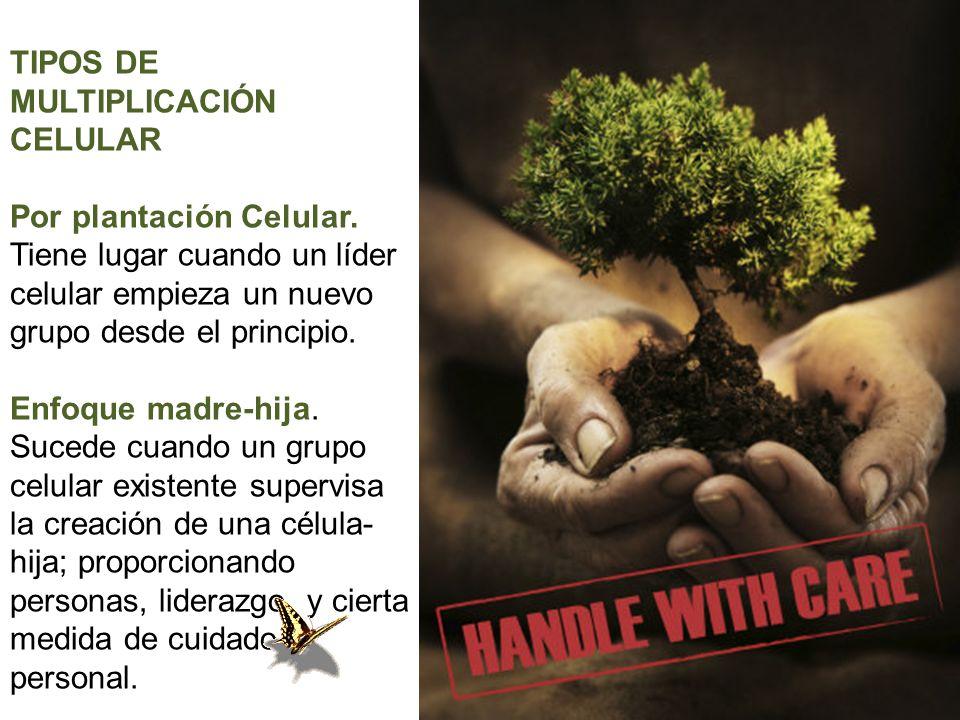 TIPOS DE MULTIPLICACIÓN CELULAR Por plantación Celular.