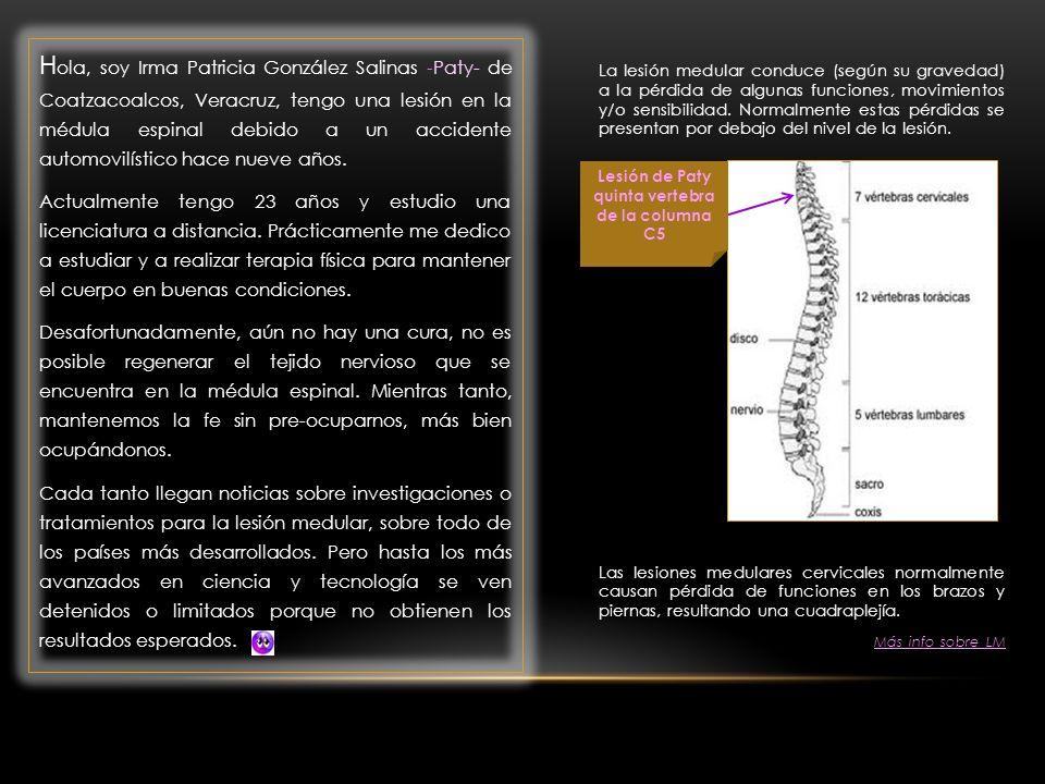 La lesión medular conduce (según su gravedad) a la pérdida de algunas funciones, movimientos y/o sensibilidad.