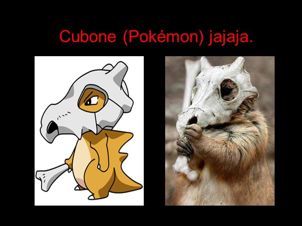 Cubone (Pokémon) jajaja.