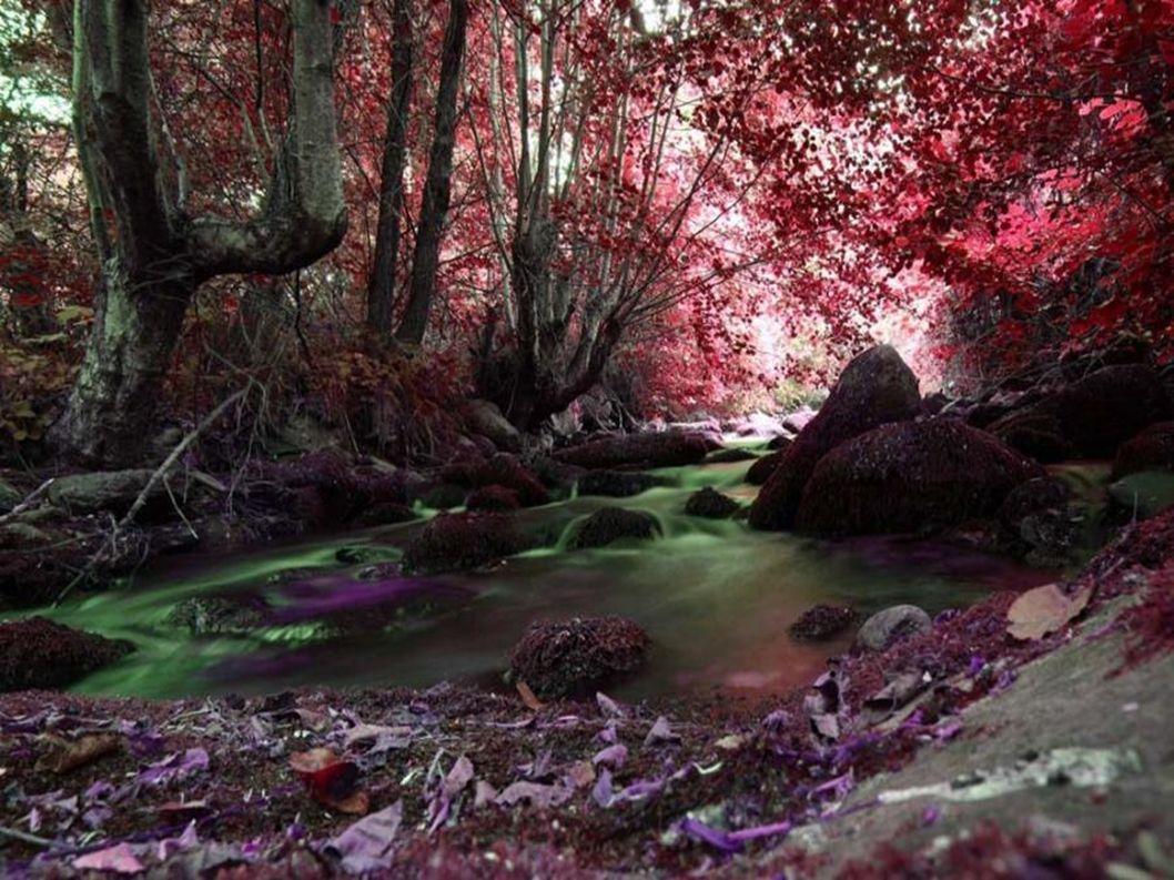 Que ante la adversidad, exista siempre una luz que ilumine tu camino y el de todas las personas que te rodean