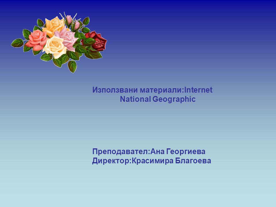 Използвани материали:Internet National Geographic Преподавател:Ана Георгиева Директор:Красимира Благоева