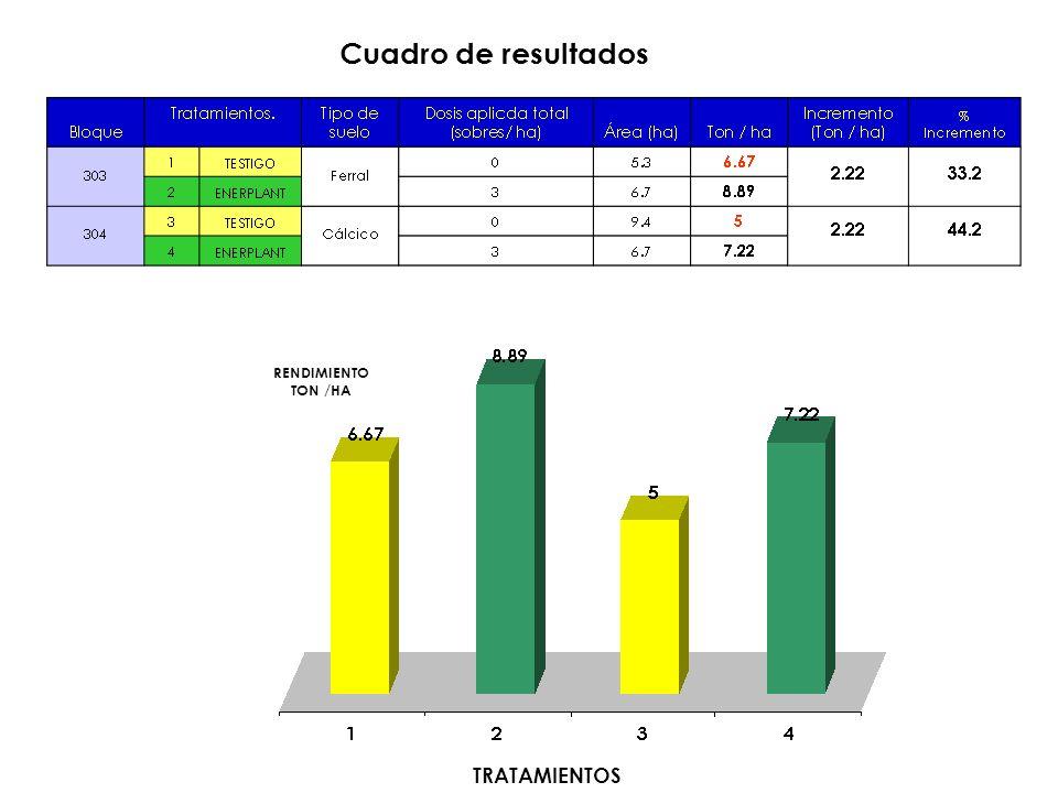 RENDIMIENTO TON /HA TRATAMIENTOS Cuadro de resultados