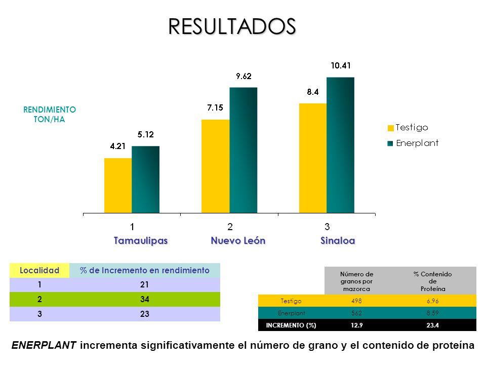 Localidad% de Incremento en rendimiento 121 234 323 RENDIMIENTO TON/HA Tamaulipas Nuevo León Sinaloa Número de granos por mazorca % Contenido de Prote