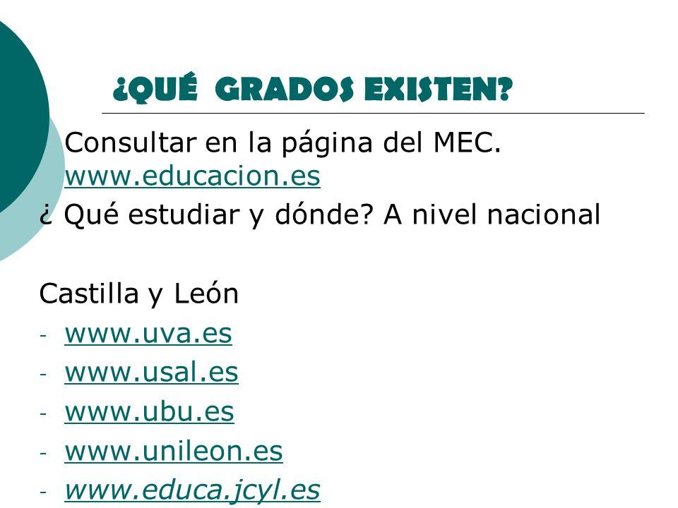 ¿QUÉ GRADOS EXISTEN? - Consultar en la página del MEC. www.educacion.es www.educacion.es ¿ Qué estudiar y dónde? A nivel nacional Castilla y León - ww