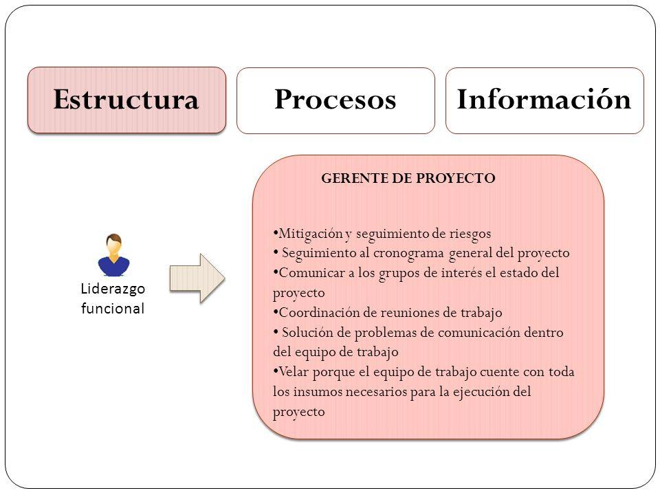 Estructura ProcesosInformación Liderazgo funcional Mitigación y seguimiento de riesgos Seguimiento al cronograma general del proyecto Comunicar a los