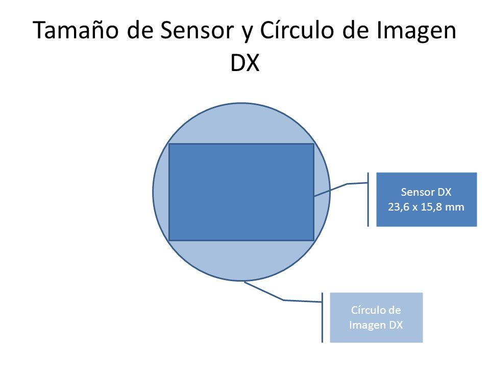 Tamaño de Sensor y Círculo de Imagen DX Círculo de Imagen DX Sensor DX 23,6 x 15,8 mm