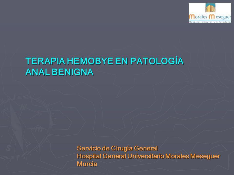 TERAPIA HEMOBYE EN PATOLOGÍA ANAL BENIGNA Servicio de Cirugía General Hospital General Universitario Morales Meseguer Murcia Servicio de Cirugía General Hospital General Universitario Morales Meseguer Murcia