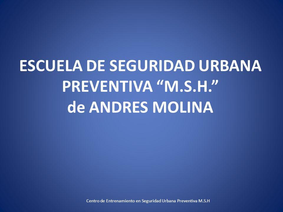 ESCUELA DE SEGURIDAD URBANA PREVENTIVA M.S.H. de ANDRES MOLINA Centro de Entrenamiento en Seguridad Urbana Preventiva M.S.H