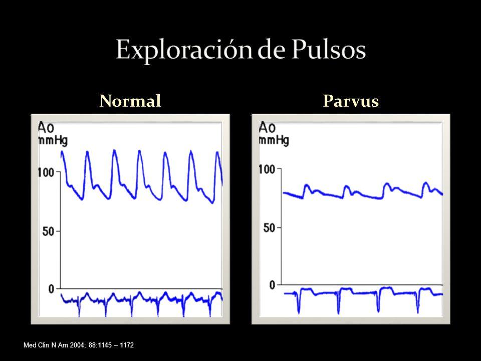 NormalParvus Med Clin N Am 2004; 88:1145 – 1172