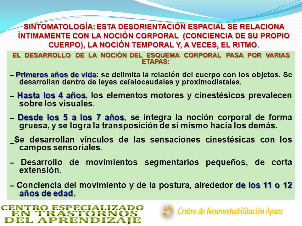 SINTOMATOLOGÍA: ESTA DESORIENTACIÓN ESPACIAL SE RELACIONA ÍNTIMAMENTE CON LA NOCIÓN CORPORAL (CONCIENCIA DE SU PROPIO CUERPO), LA NOCIÓN TEMPORAL Y, A