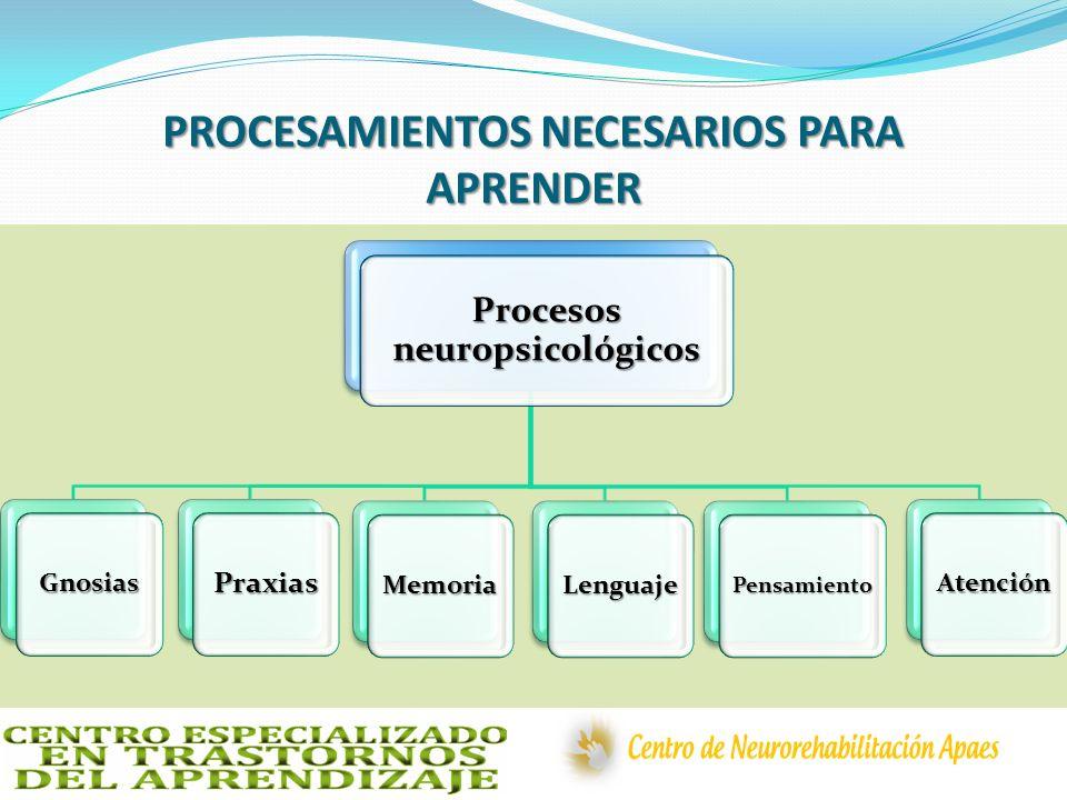 PROCESAMIENTOS NECESARIOS PARA APRENDER Procesos neuropsicológicos GnosiasPraxias MemoriaLenguajePensamiento Atención