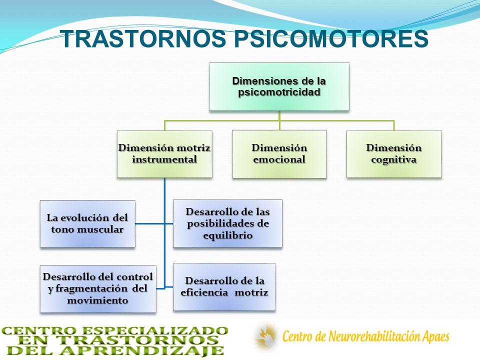 TRASTORNOS PSICOMOTORES Dimensiones de la psicomotricidad Dimensión motriz instrumental La evolución del tono muscular Desarrollo de las posibilidades