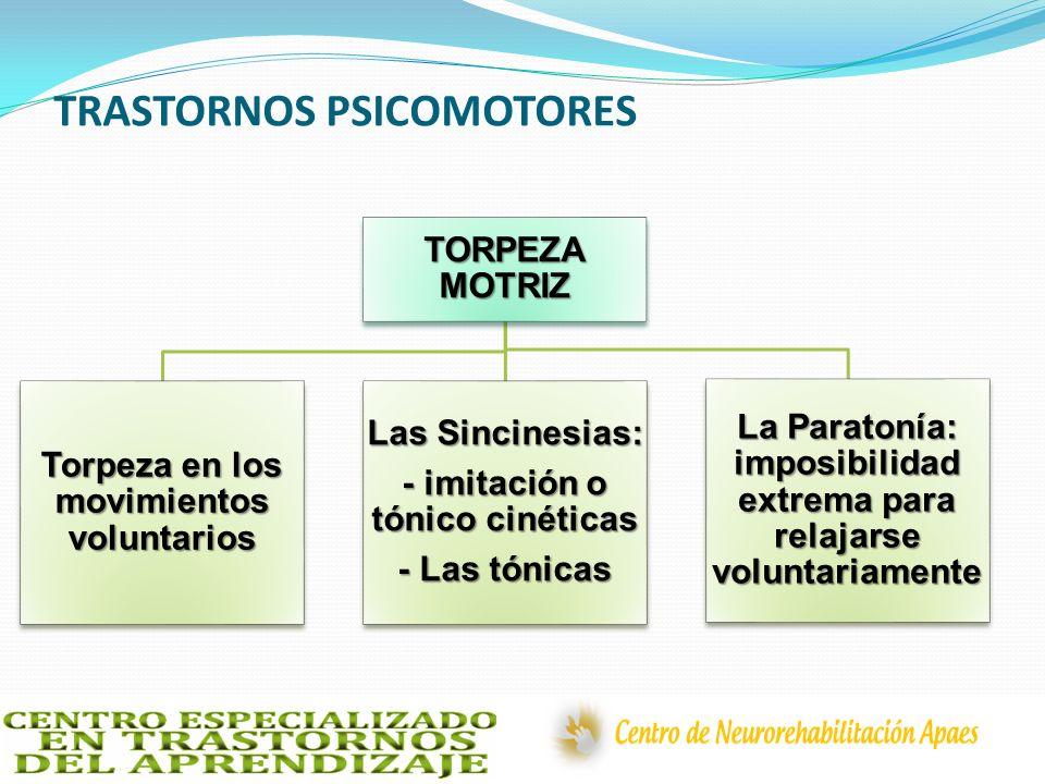 TRASTORNOS PSICOMOTORES TORPEZA MOTRIZ Torpeza en los movimientos voluntarios Las Sincinesias: - imitación o tónico cinéticas - Las tónicas La Paraton