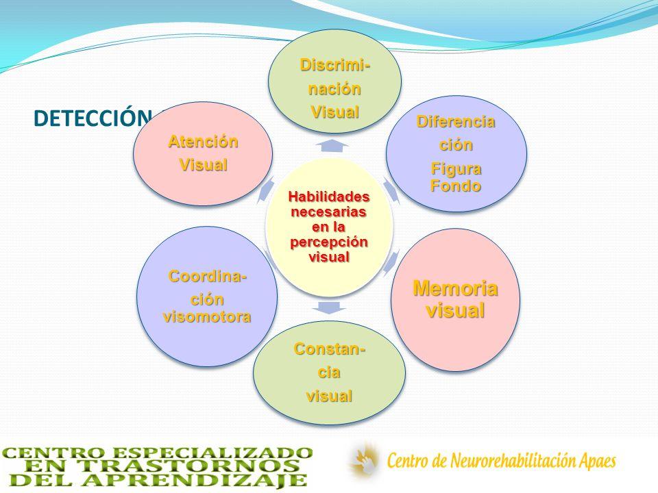 DETECCIÓN PRECOZ Habilidades necesarias en la percepción visual Discrimi-naciónVisual Diferenciación Figura Fondo Memoria visual Constan-ciavisual Coo