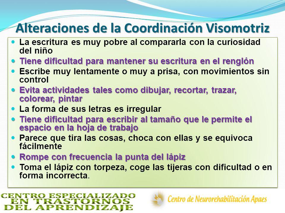 Alteraciones de la Coordinación Visomotriz La escritura es muy pobre al compararla con la curiosidad del niño Tiene dificultad para mantener su escrit