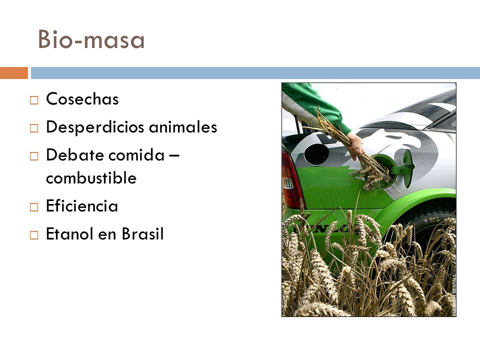 Bio-masa Cosechas Desperdicios animales Debate comida – combustible Eficiencia Etanol en Brasil