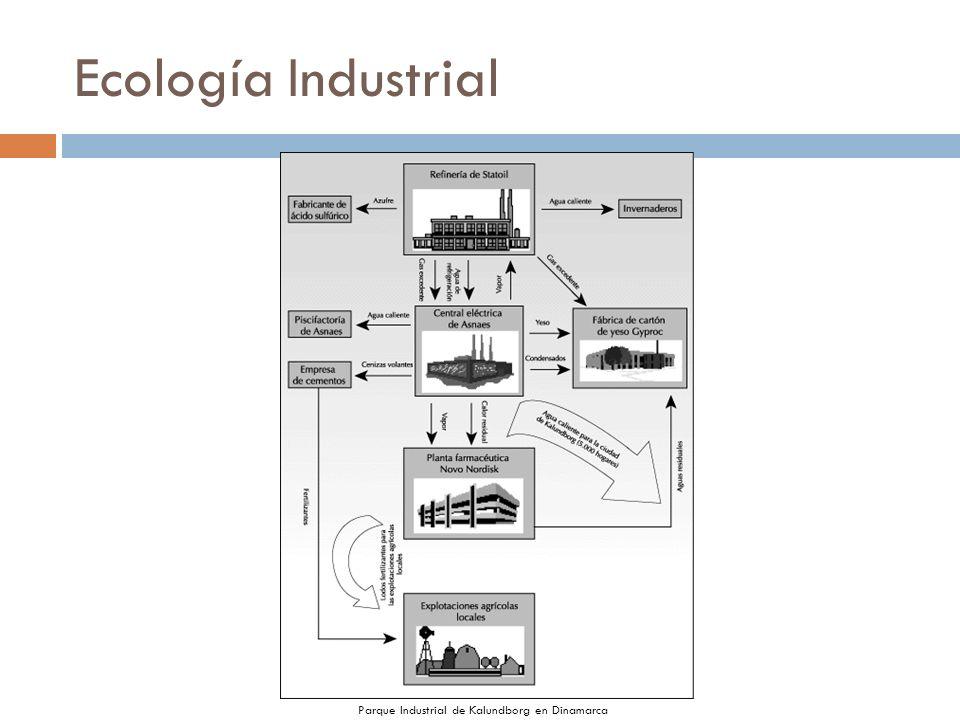 Ecología Industrial Parque Industrial de Kalundborg en Dinamarca