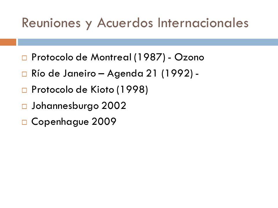 Reuniones y Acuerdos Internacionales Protocolo de Montreal (1987) - Ozono Río de Janeiro – Agenda 21 (1992) - Protocolo de Kioto (1998) Johannesburgo
