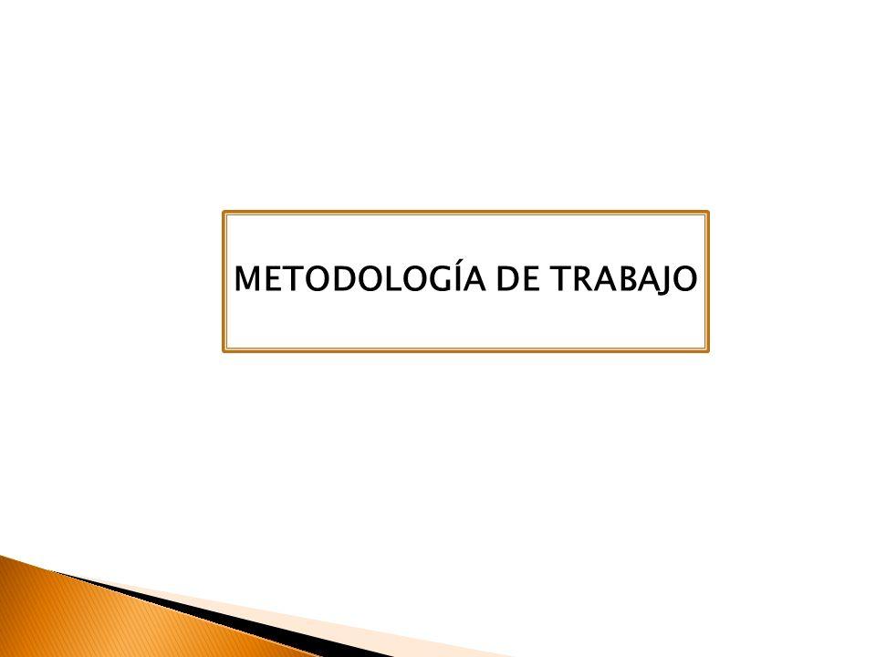 TABLA DE CONTENIDOS METODOLOGÍA DE TRABAJO