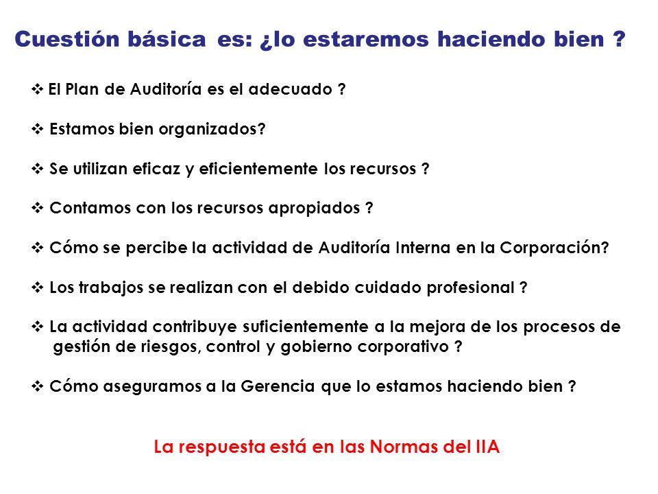 Cuestión básica es: ¿lo estaremos haciendo bien ? El Plan de Auditoría es el adecuado ? Estamos bien organizados? Se utilizan eficaz y eficientemente