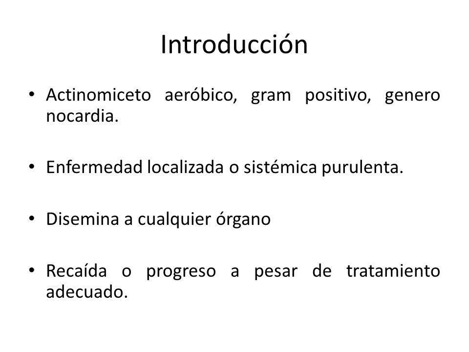 Introducción Actinomiceto aeróbico, gram positivo, genero nocardia. Enfermedad localizada o sistémica purulenta. Disemina a cualquier órgano Recaída o