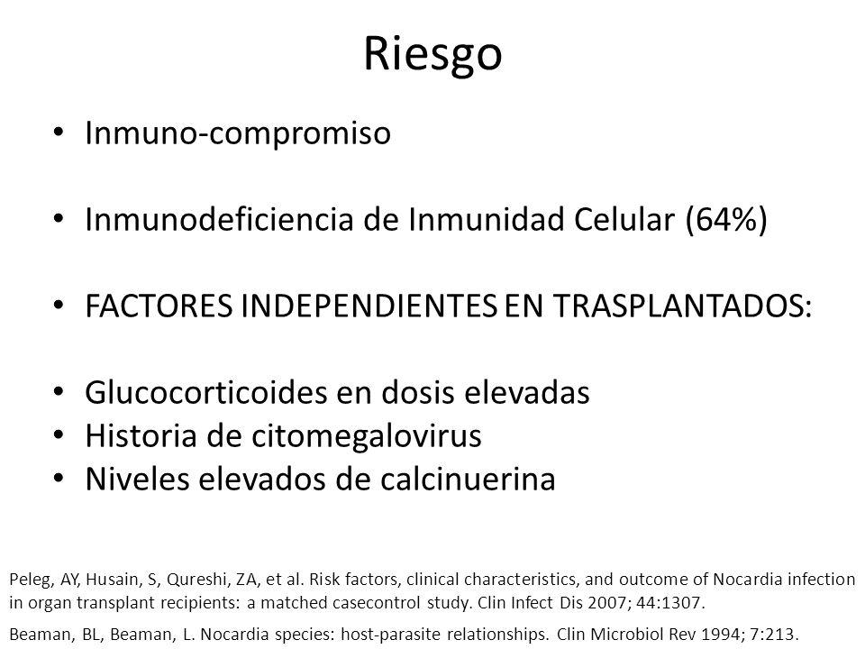 Riesgo Inmuno-compromiso Inmunodeficiencia de Inmunidad Celular (64%) FACTORES INDEPENDIENTES EN TRASPLANTADOS: Glucocorticoides en dosis elevadas His