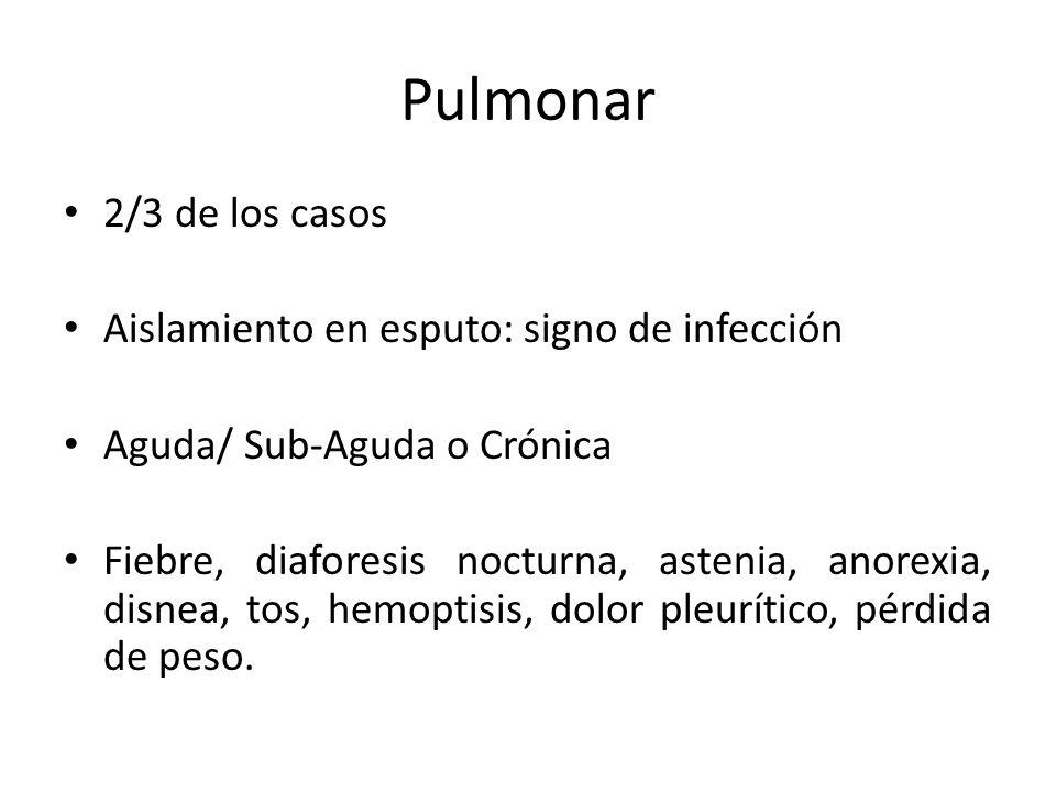 Pulmonar 2/3 de los casos Aislamiento en esputo: signo de infección Aguda/ Sub-Aguda o Crónica Fiebre, diaforesis nocturna, astenia, anorexia, disnea,