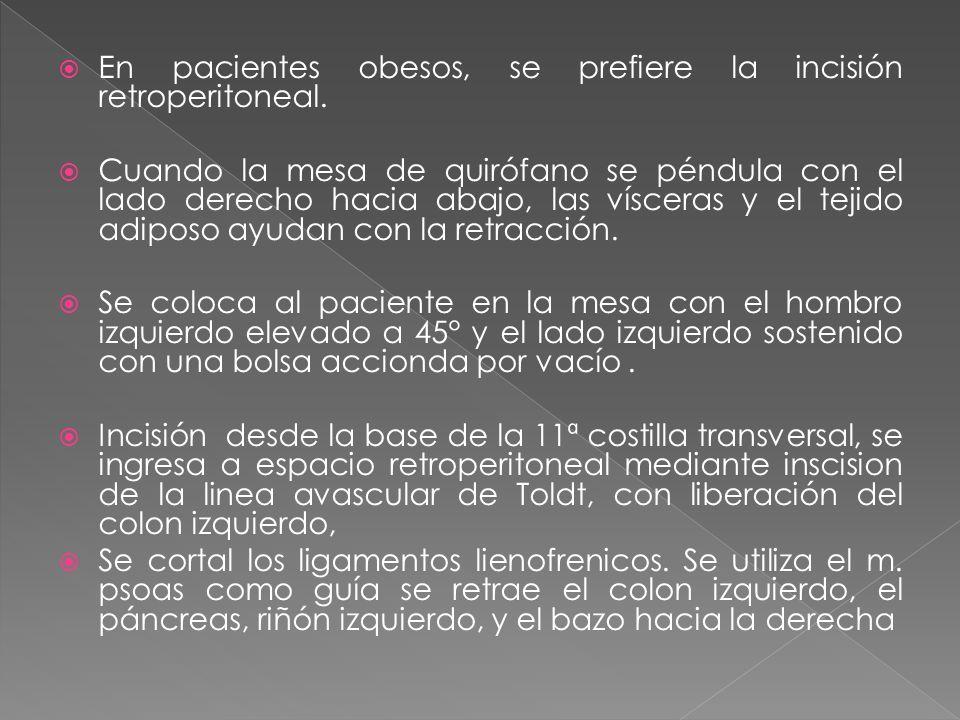 En pacientes obesos, se prefiere la incisión retroperitoneal. Cuando la mesa de quirófano se péndula con el lado derecho hacia abajo, las vísceras y e