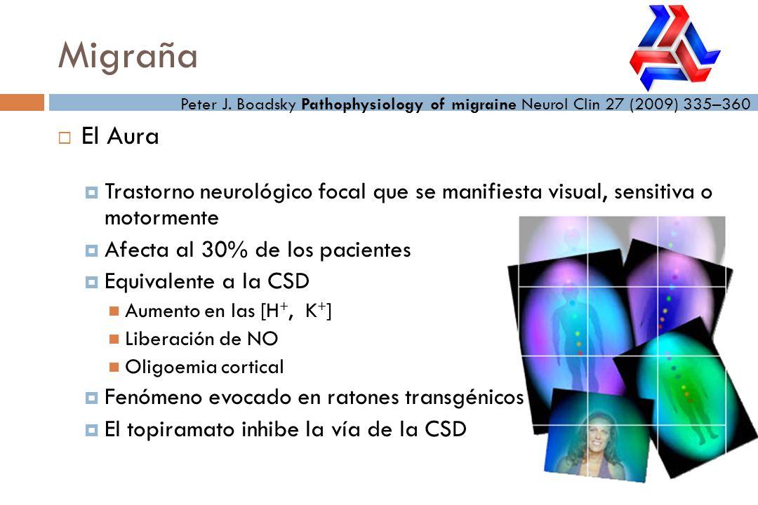 El Aura Trastorno neurológico focal que se manifiesta visual, sensitiva o motormente Afecta al 30% de los pacientes Equivalente a la CSD Aumento en la