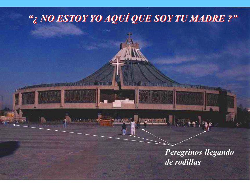 PRIMERA APARICIÓN Madrugada Sabado 9 Dic 1531, Juan Diego iba a misa a Tlaltelolco, la Virgen dijo: 28.