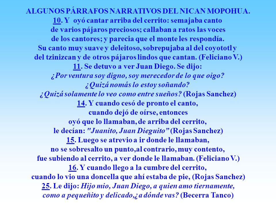 CUARTA APARICIÓN Madrugada martes 12 Dic 1531, La Virgen le salio a su encuentro, junto