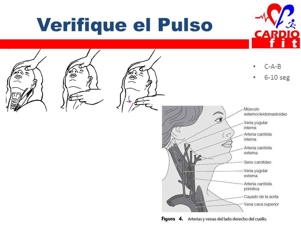 Verifique el Pulso C-A-B 6-10 seg