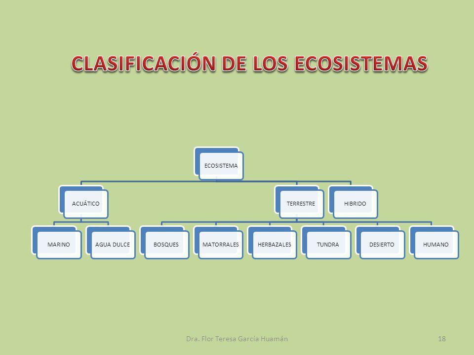 ECOSISTEMAACUÁTICOMARINOAGUA DULCETERRESTREBOSQUESMATORRALESHERBAZALESTUNDRADESIERTOHUMANOHIBRIDO Dra. Flor Teresa García Huamán18