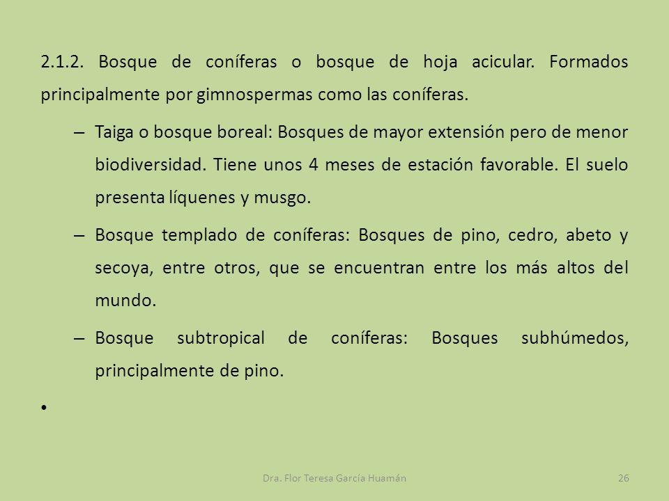 2.1.2. Bosque de coníferas o bosque de hoja acicular. Formados principalmente por gimnospermas como las coníferas. – Taiga o bosque boreal: Bosques de