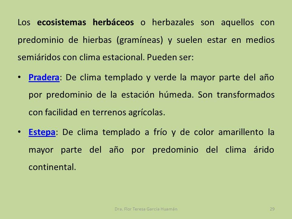 Los ecosistemas herbáceos o herbazales son aquellos con predominio de hierbas (gramíneas) y suelen estar en medios semiáridos con clima estacional. Pu
