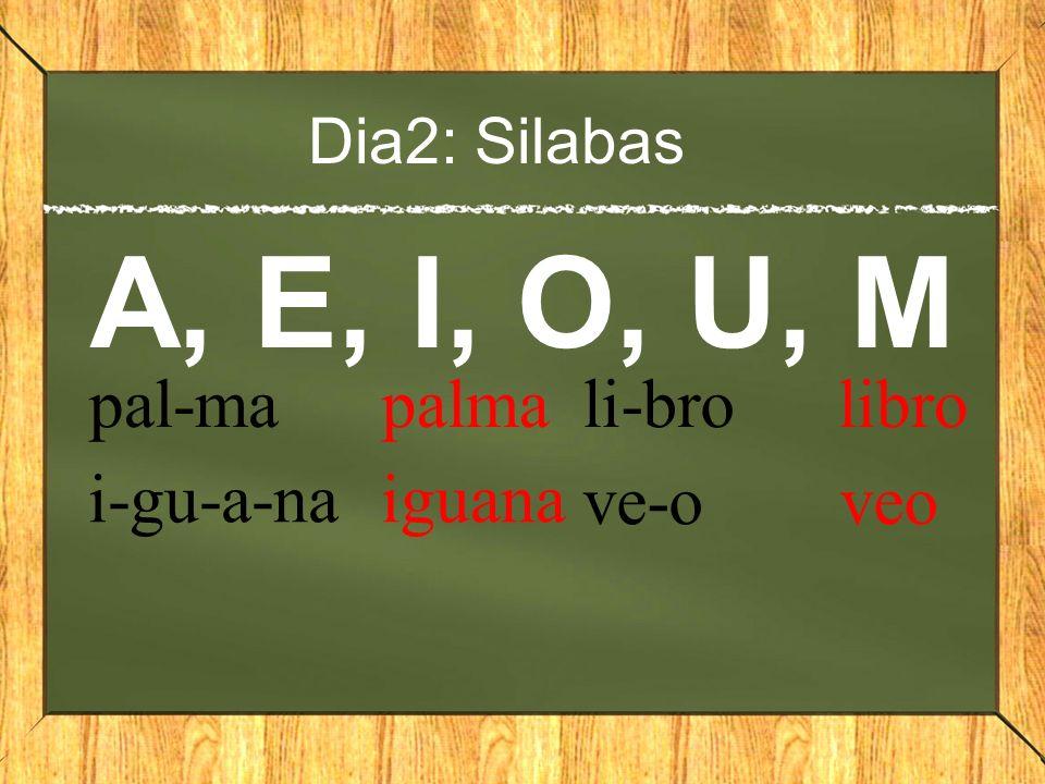 Dia2: Silabas A, E, I, O, U, M pal-ma palma i-gu-a-na iguana li-bro libro ve-o veo