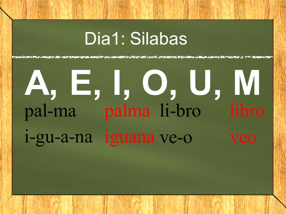 Dia1: Silabas A, E, I, O, U, M pal-ma palma i-gu-a-na iguana li-bro libro ve-o veo