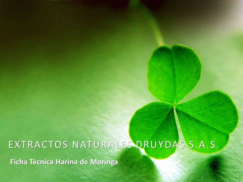 INFORMACIÓN DE CONTACTO Extractos Naturales Druydas S.A.S.